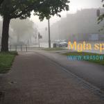 Weekendowa mgła w połowie maja