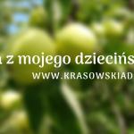 Moje wspomnienia z jabłkami
